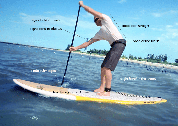 How to Use Stand up Paddle Board